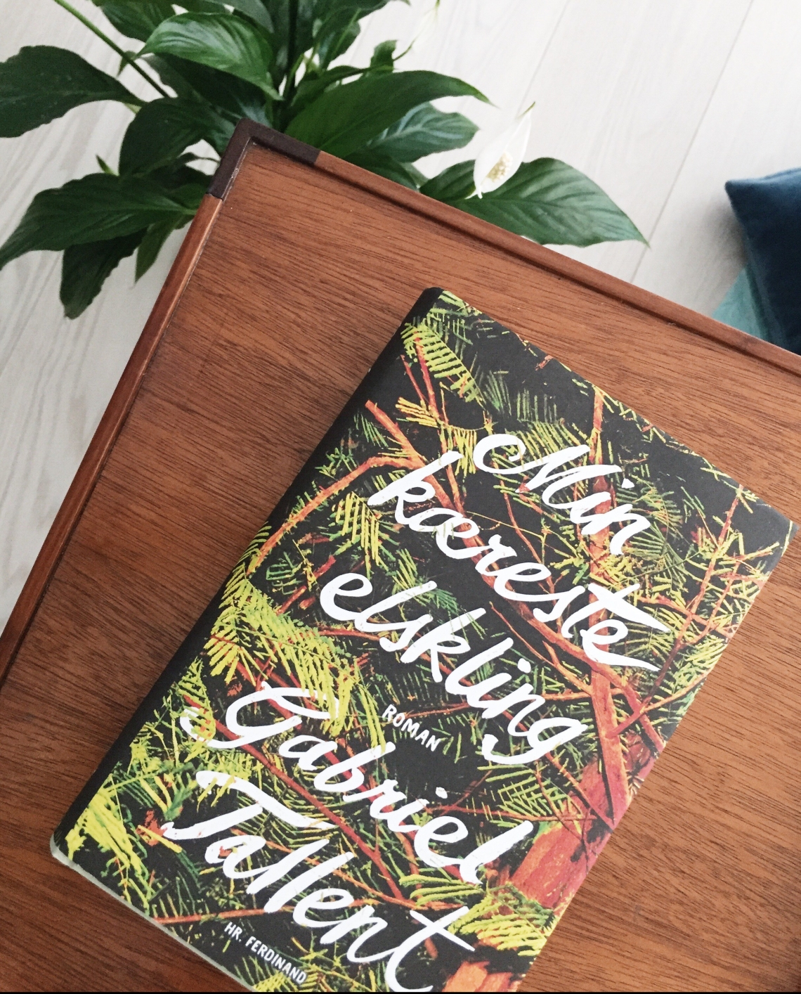 Et billede af romanen Min kæreste elskling af den amerikanske forfatter Gabriel Tallent